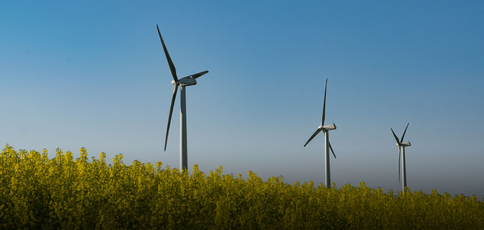 Renewable energy: EU sets bar too high
