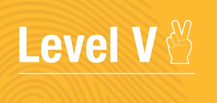 Level V